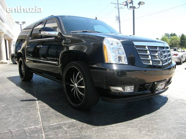 photos 2008 cadillac escalade esv custom for sale. Cars Review. Best American Auto & Cars Review