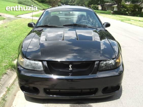 Photos  2003 Ford 2003 Terminator SVT Mustang Cobra SVT Mustang