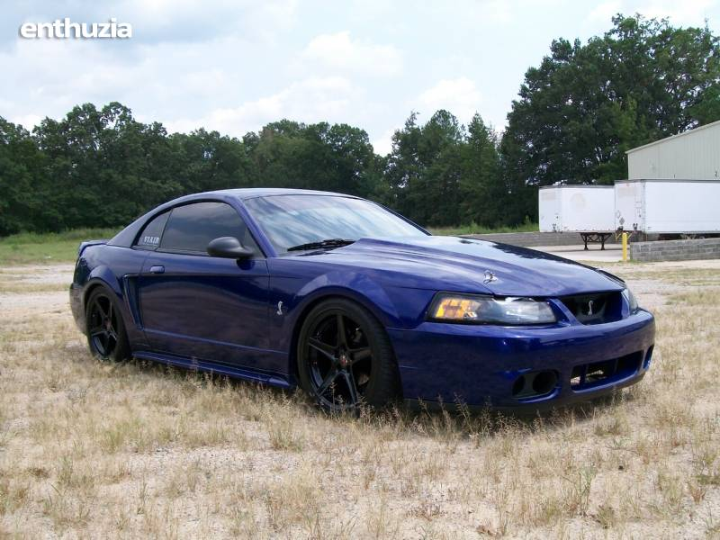 All Types  2000 Cobra Mustang  19s20s Car and Autos All Makes