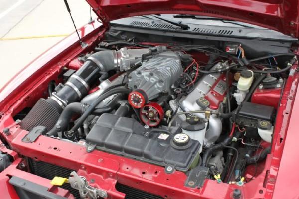Photos | 2004 Ford Mustang Cobra [Mustang] Cobra SVT For Sale