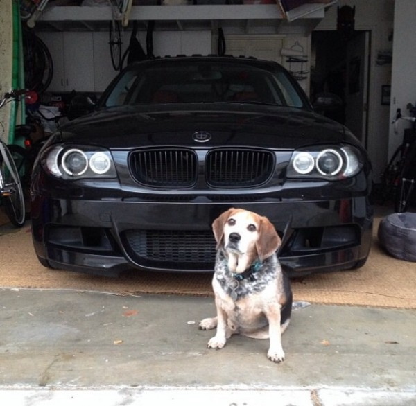 2008 BMW 135 For Sale