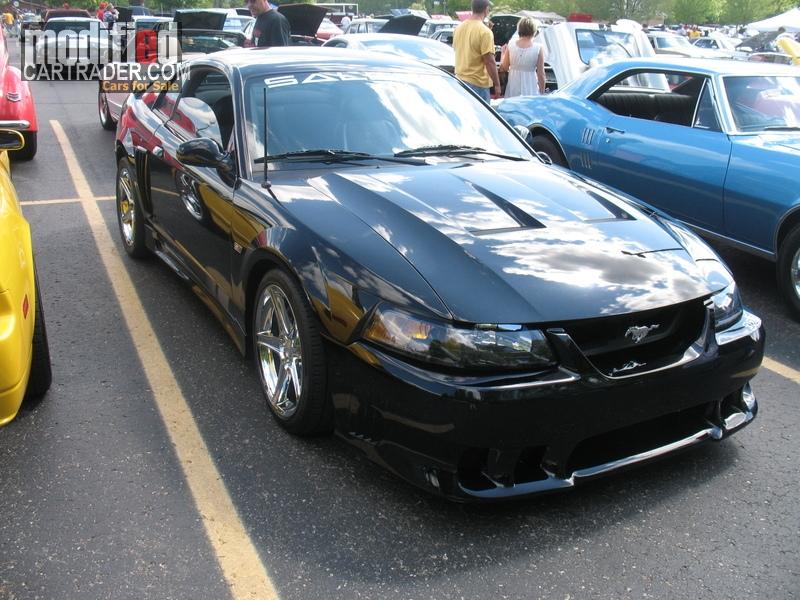 2004 Ford saleen cobra SVT Mustang Cobra For Sale  Bloomfield