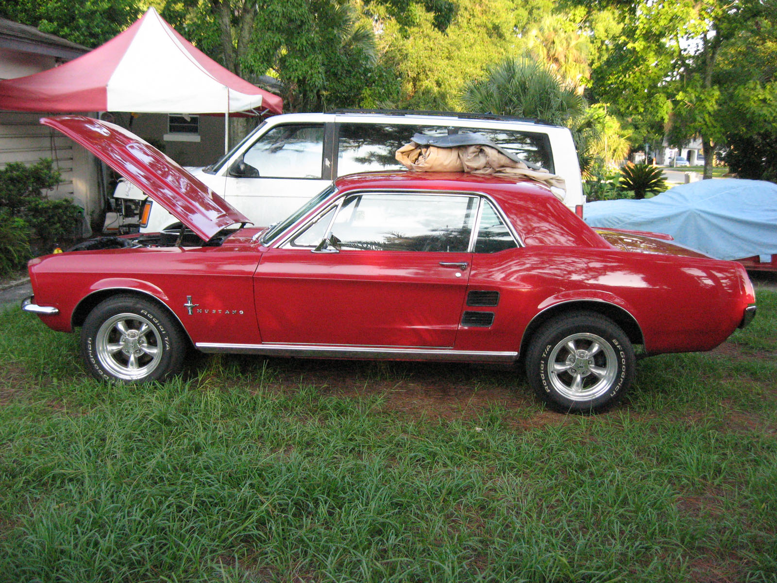 fords for sale - photo #18