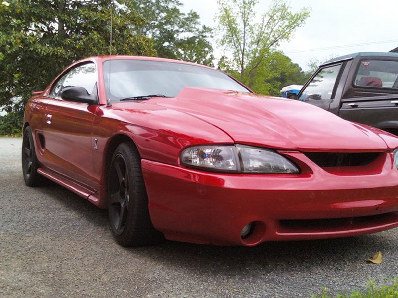 1995 ford svt mustang cobra for sale georgia. Black Bedroom Furniture Sets. Home Design Ideas
