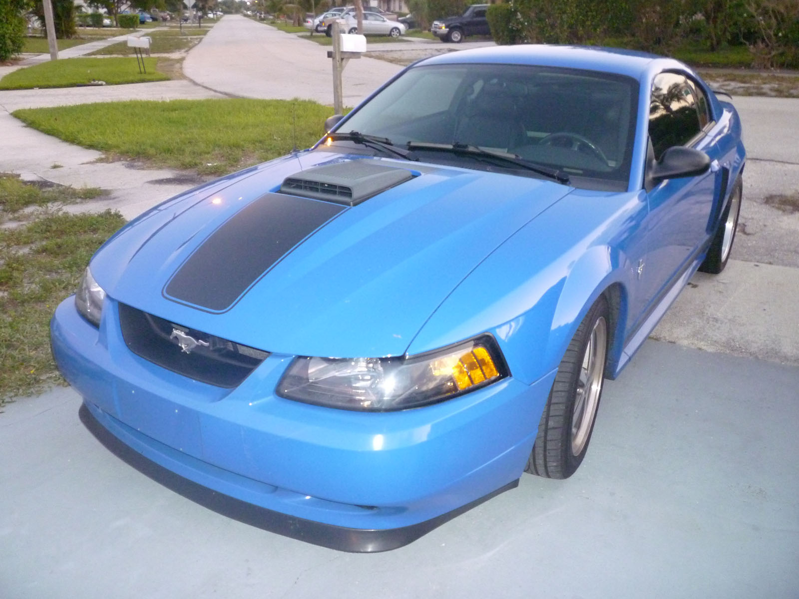 2003 ford mach1 mustang mach 1 for sale deerfield beach florida. Black Bedroom Furniture Sets. Home Design Ideas