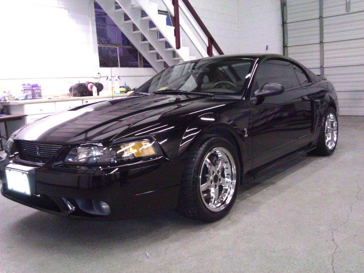 1999 Ford SVT Mustang Cobra supercharged For Sale  Jacksonville