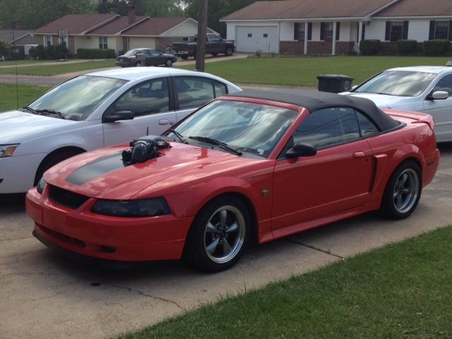 1999 ford mustang gt for sale dothan alabama. Black Bedroom Furniture Sets. Home Design Ideas