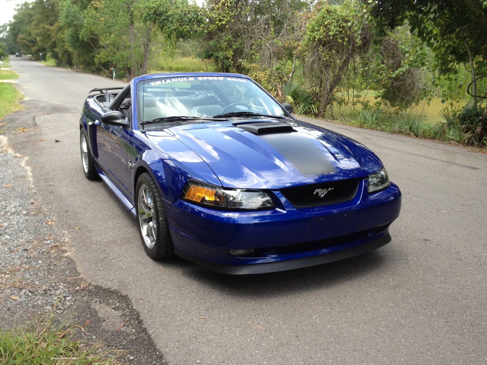 2002 Ford Mach 1 Clone [Mustang] GT Supercharged For Sale | Westlake Ohio