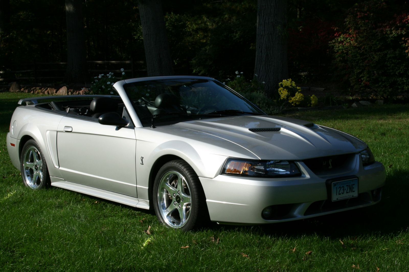2001 ford svt mustang cobra for sale suffield connecticut. Black Bedroom Furniture Sets. Home Design Ideas