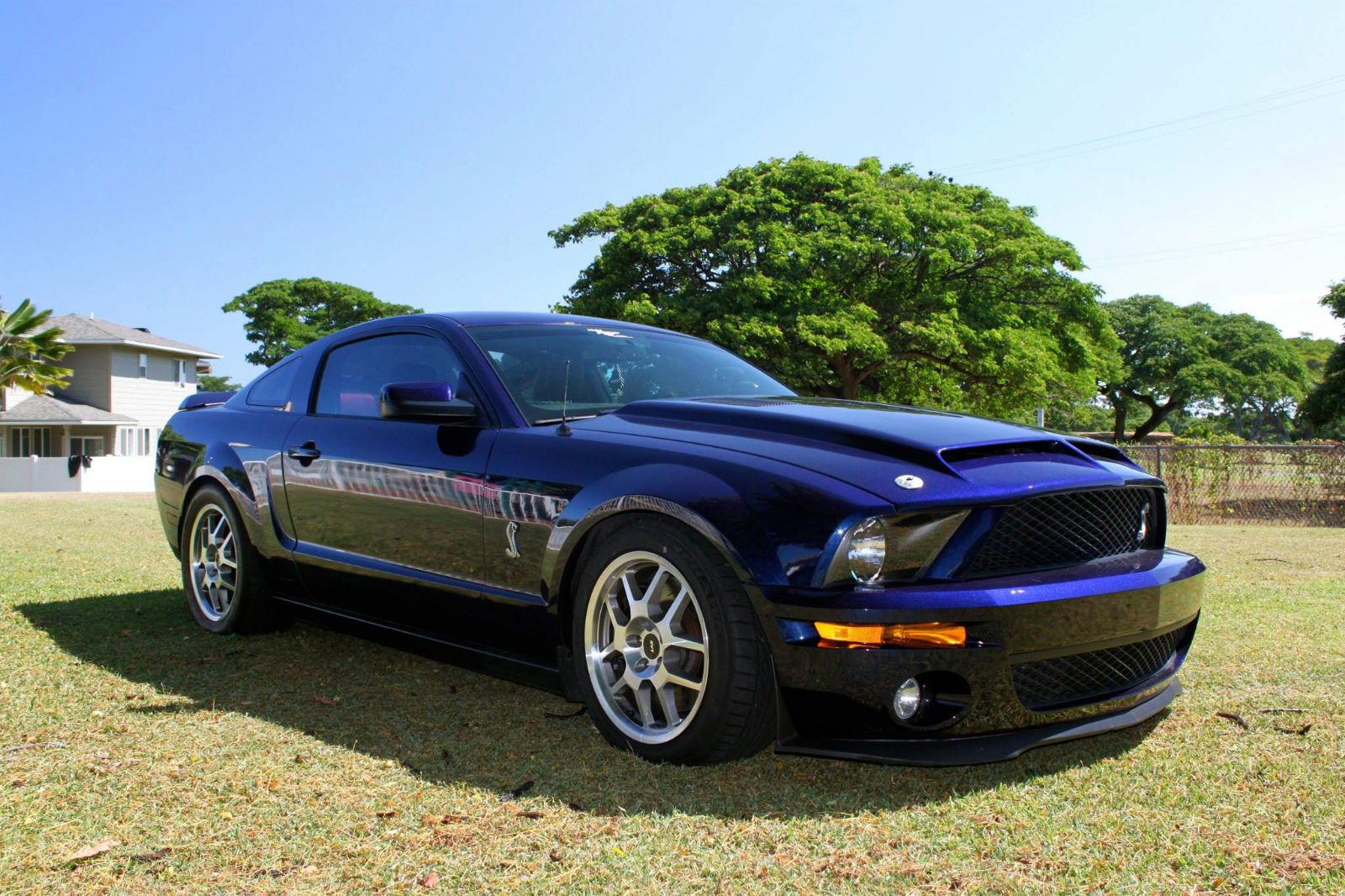 2007 ford shelby gt500 gt500 for sale honolulu hawaii. Black Bedroom Furniture Sets. Home Design Ideas